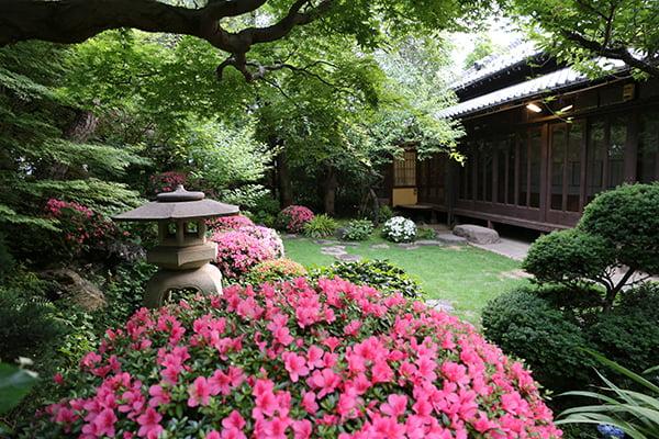 庭から建物
