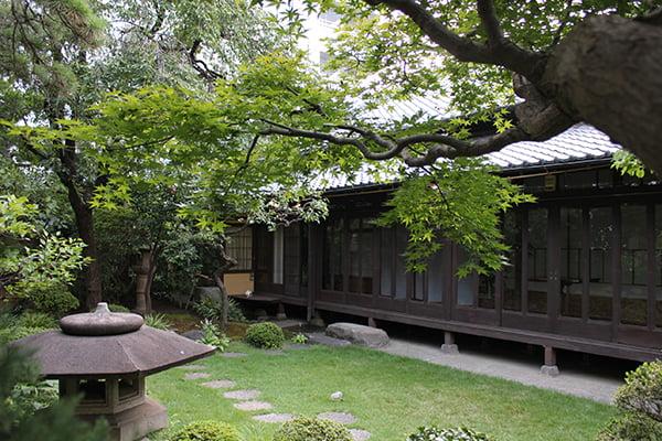 庭から建物(夏)